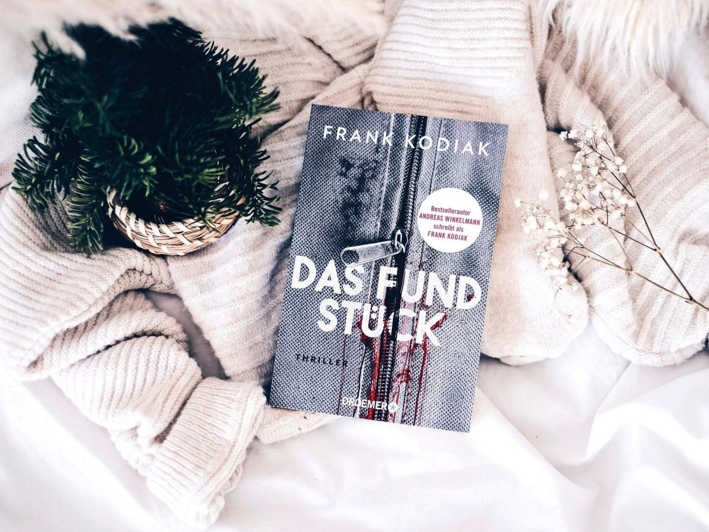 Rezension Frank Kodiak  – Das Fundstück